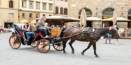 Hour Food Delivery Florence Italy